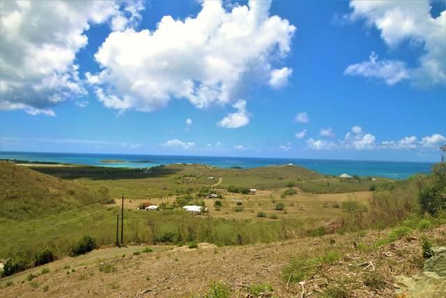 43 Seven Hills Ea, St. Croix, VI 00820 (MLS #20-1386) :: Coldwell Banker Stout Realty