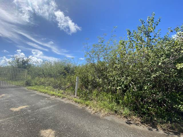 30 Great Pond Ea, St. Croix, VI 00820 (MLS #20-139) :: Hanley Team | Farchette & Hanley Real Estate