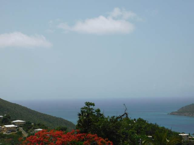 14-30 Bonne Resolution Lns, St. Thomas, VI 00802 (MLS #20-1397) :: Coldwell Banker Stout Realty