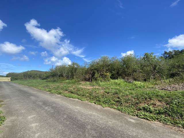 4 Great Pond Ea, St. Croix, VI 00820 (MLS #20-140) :: Hanley Team | Farchette & Hanley Real Estate