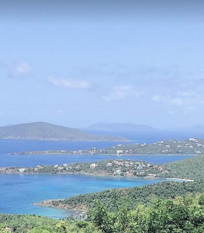 10A-2 Caret Bay Lns, St. Thomas, VI 00802 (MLS #20-1401) :: Coldwell Banker Stout Realty