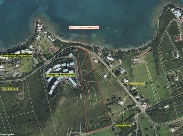 2A, 3A & 4 Coakley Bay Eb, St. Croix, VI 00820 (MLS #20-1420) :: Hanley Team | Farchette & Hanley Real Estate