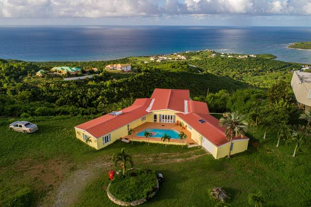 19 and 19A Concordia Nb, St. Croix, VI 00820 (MLS #20-1429) :: Hanley Team | Farchette & Hanley Real Estate