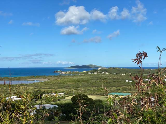 116 Mt. Pleasant Ea, St. Croix, VI 00820 (MLS #20-145) :: Hanley Team | Farchette & Hanley Real Estate