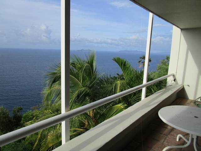 42L Lovenlund Gns, St. Thomas, VI 00802 (MLS #20-1466) :: Coldwell Banker Stout Realty