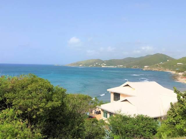 21 South Grapetree Eb, St. Croix, VI 00820 (MLS #20-1471) :: Hanley Team | Farchette & Hanley Real Estate
