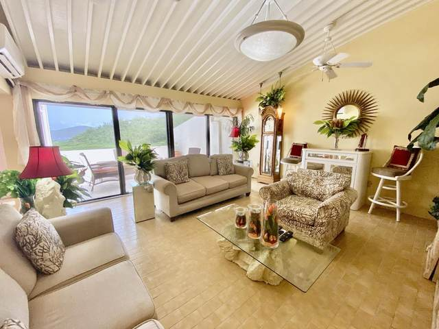 508U Lovenlund Gns, St. Thomas, VI 00802 (MLS #20-1477) :: Coldwell Banker Stout Realty