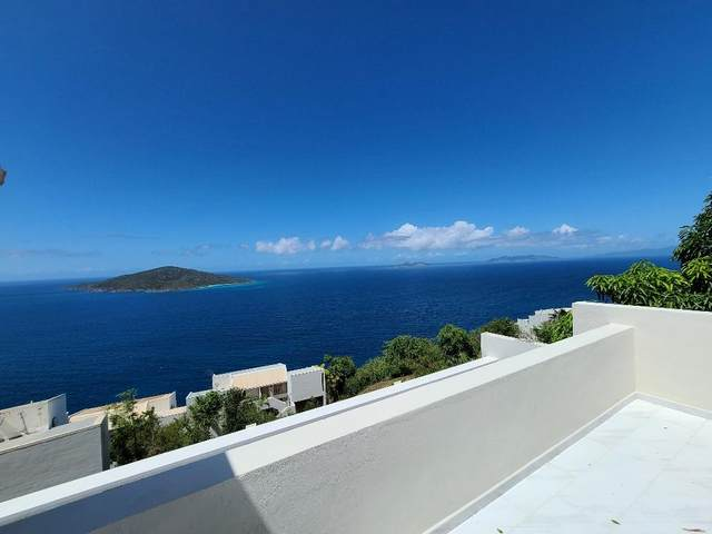 25-U Lovenlund Gns, St. Thomas, VI 00802 (MLS #20-1480) :: Coldwell Banker Stout Realty