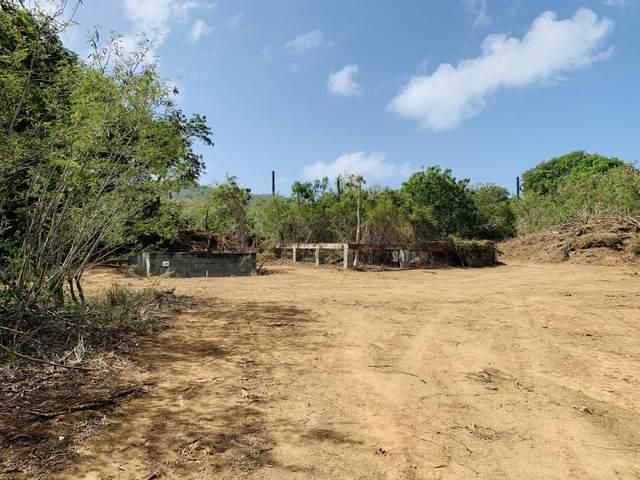 284 Cotton Valley Eb, St. Croix, VI 00820 (MLS #20-1494) :: Hanley Team | Farchette & Hanley Real Estate