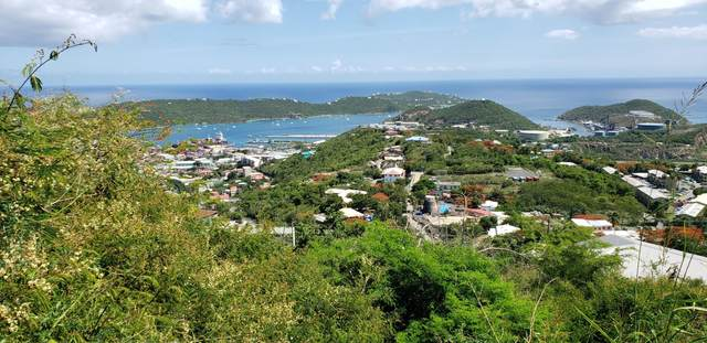 107-2-11 Contant Ss, St. Thomas, VI 00802 (MLS #20-1502) :: Hanley Team | Farchette & Hanley Real Estate
