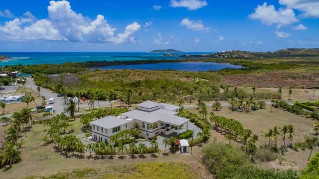 40 Southgate Farm Ea, St. Croix, VI 00820 (MLS #20-1540) :: The Boulger Team @ Calabash Real Estate