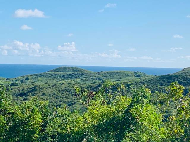 13 Marienhoj Ea, St. Croix, VI 00820 (MLS #20-155) :: Hanley Team | Farchette & Hanley Real Estate