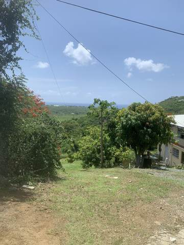 35 Frederikshaab We, St. Croix, VI 00840 (MLS #20-1550) :: Coldwell Banker Stout Realty