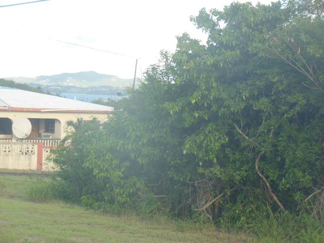 7B of 5 St. John Qu, St. Croix, VI 00820 (MLS #20-1554) :: Coldwell Banker Stout Realty