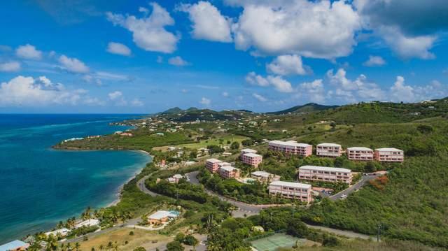 F11 Coakley Bay Eb, St. Croix, VI 00820 (MLS #20-1562) :: The Boulger Team @ Calabash Real Estate