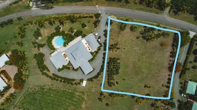 38 Southgate Farm Ea, St. Croix, VI 00820 (MLS #20-1566) :: Hanley Team   Farchette & Hanley Real Estate
