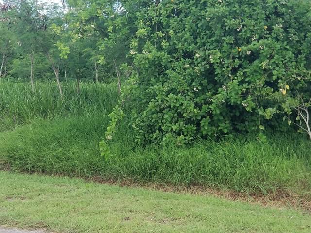 287 Enfield Green Pr, St. Croix, VI 00840 (MLS #20-1568) :: Hanley Team | Farchette & Hanley Real Estate