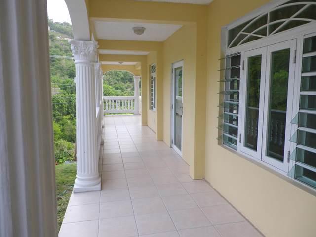22-4 Mandahl Gns, St. Thomas, VI 00802 (MLS #20-1574) :: Hanley Team | Farchette & Hanley Real Estate