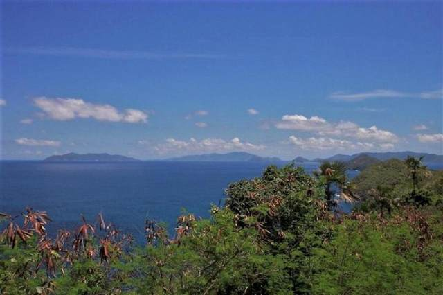 D-4-D Lovenlund Gns, St. Thomas, VI 00802 (MLS #20-1576) :: Coldwell Banker Stout Realty