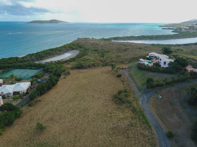 101A Green Cay Ea, St. Croix, VI 00820 (MLS #20-1581) :: Coldwell Banker Stout Realty