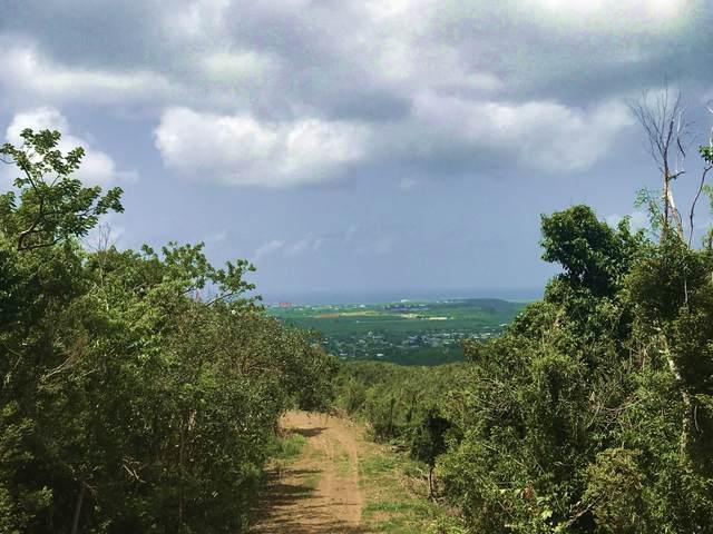 43 Clairmont Nb, St. Croix, VI 00840 (MLS #20-1587) :: Coldwell Banker Stout Realty