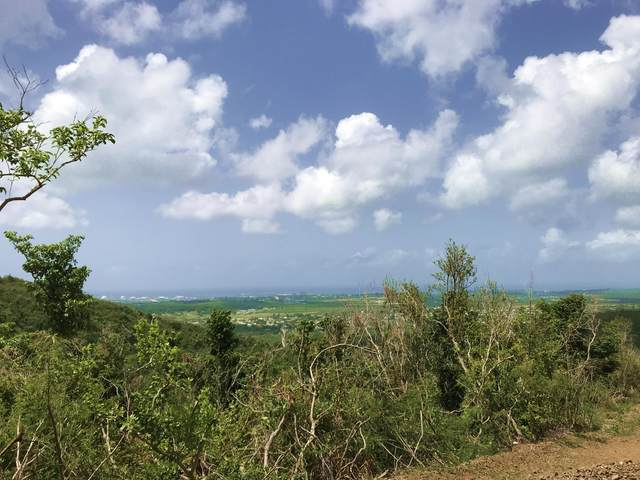 44 Clairmont Nb, St. Croix, VI 00840 (MLS #20-1588) :: Hanley Team   Farchette & Hanley Real Estate