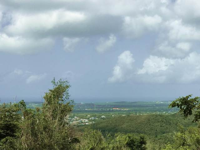 45 Clairmont Nb, St. Croix, VI 00840 (MLS #20-1589) :: Coldwell Banker Stout Realty
