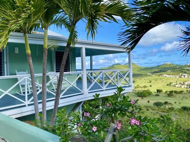 222 Cotton Valley Eb, St. Croix, VI 00820 (MLS #20-16) :: Hanley Team | Farchette & Hanley Real Estate