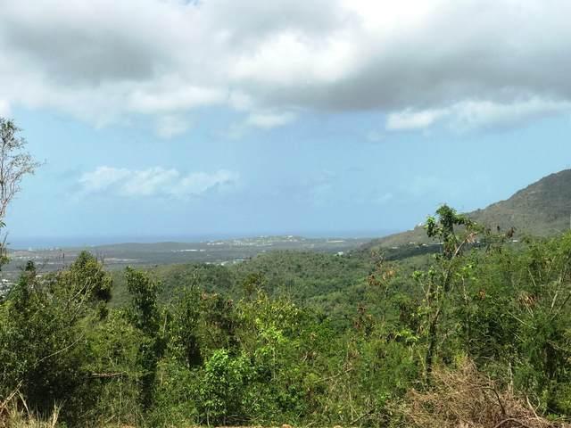 58 Clairmont Nb, St. Croix, VI 00840 (MLS #20-1602) :: Coldwell Banker Stout Realty