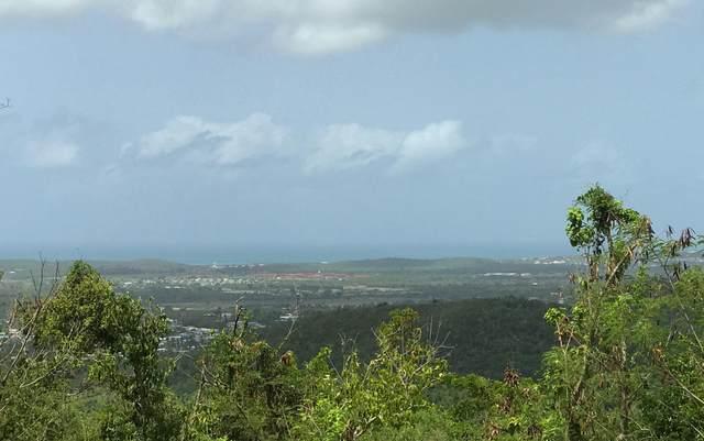 59 Clairmont Nb, St. Croix, VI 00840 (MLS #20-1603) :: Coldwell Banker Stout Realty