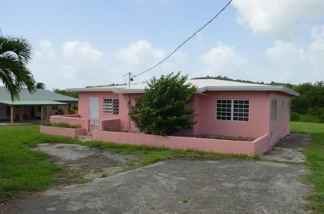 146 Hermon Hill Co, St. Croix, VI 00820 (MLS #20-1606) :: Hanley Team | Farchette & Hanley Real Estate