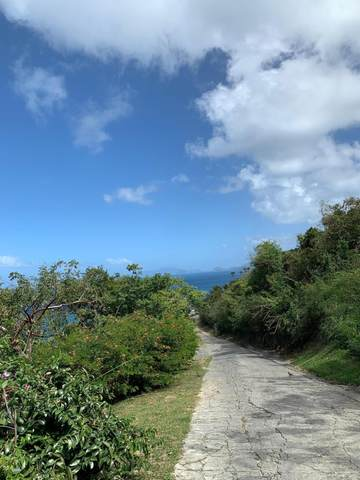 C42 Lovenlund Gns, St. Thomas, VI 00802 (MLS #20-1613) :: Hanley Team | Farchette & Hanley Real Estate