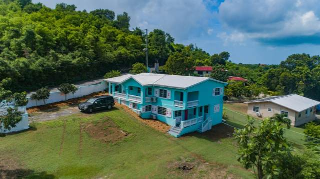 13-V Constitution Hill Co, St. Croix, VI 00820 (MLS #20-1618) :: Coldwell Banker Stout Realty