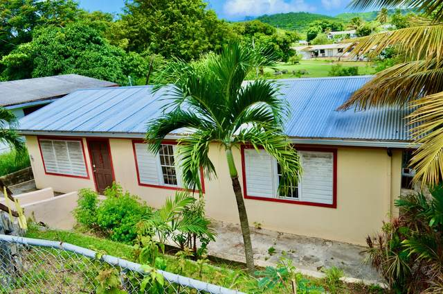 345 Mon Bijou Ki, St. Croix, VI 00850 (MLS #20-1622) :: Hanley Team | Farchette & Hanley Real Estate