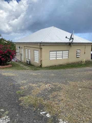 11 All For The Betr Ea, St. Croix, VI 00820 (MLS #20-1627) :: Hanley Team | Farchette & Hanley Real Estate