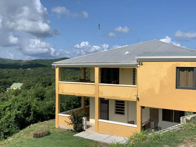 47 Colquohoun Ki, St. Croix, VI 00000 (MLS #20-1644) :: Hanley Team | Farchette & Hanley Real Estate