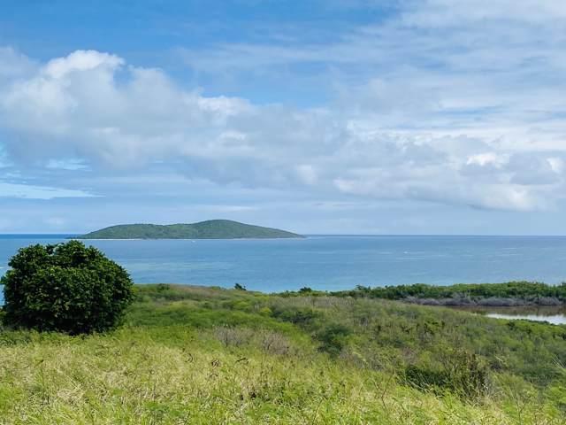 102 Green Cay Ea, St. Croix, VI 00820 (MLS #20-166) :: Hanley Team   Farchette & Hanley Real Estate