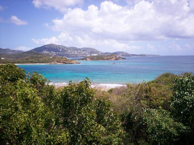 37-1 Water Island Ss, St. Thomas, VI 00802 (MLS #20-1671) :: Hanley Team | Farchette & Hanley Real Estate