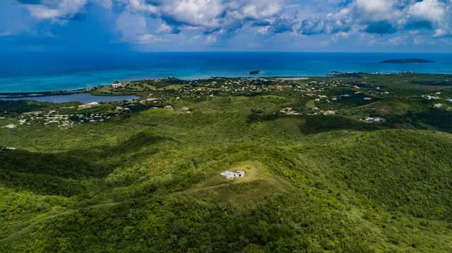 23B & 24 Carina Ea, St. Croix, VI 00820 (MLS #20-1674) :: Coldwell Banker Stout Realty