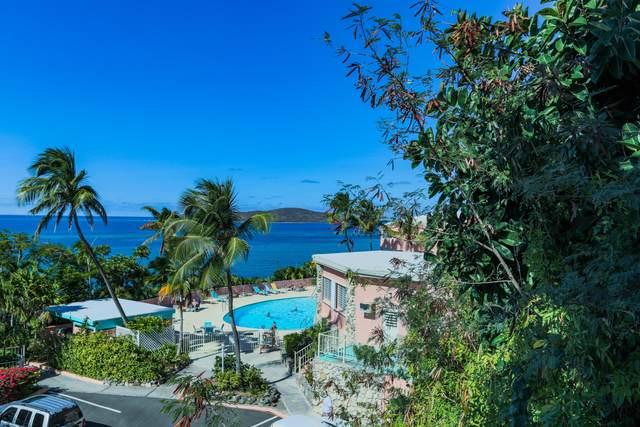 J-1 Coakley Bay Eb, St. Croix, VI 00820 (MLS #20-1675) :: Hanley Team   Farchette & Hanley Real Estate