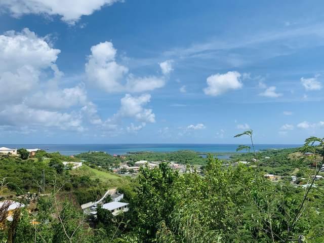 95C/108 Mt. Welcome Ea, St. Croix, VI 00820 (MLS #20-1680) :: Coldwell Banker Stout Realty