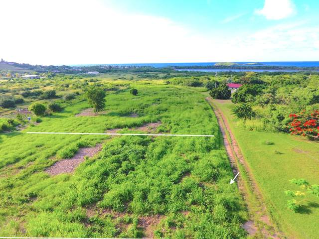 61 Y A Southgate Farm Ea, St. Croix, VI 00820 (MLS #20-1687) :: Hanley Team | Farchette & Hanley Real Estate