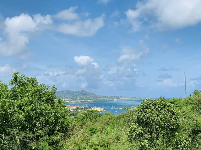 124 Eliza's Retreat Ea, St. Croix, VI 00820 (MLS #20-1698) :: Coldwell Banker Stout Realty