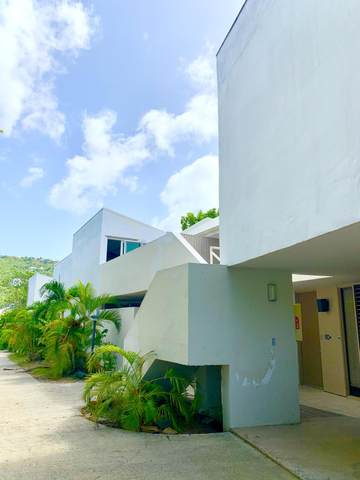 Upper Lovenlund Gns, St. Thomas, VI 00802 (MLS #20-1700) :: Hanley Team | Farchette & Hanley Real Estate