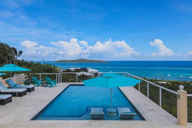 7 & 7C Teagues Bay Eb, St. Croix, VI 00820 (MLS #20-1702) :: Hanley Team | Farchette & Hanley Real Estate