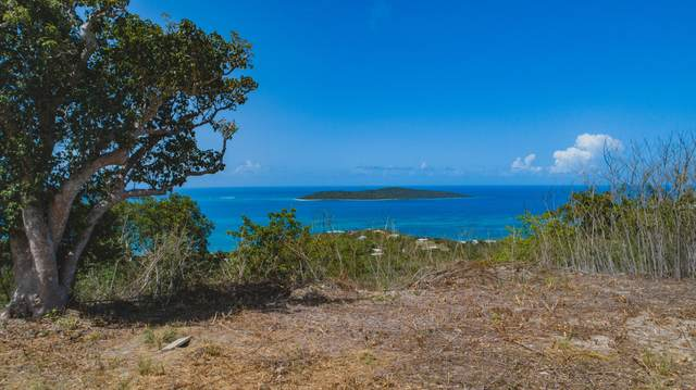 46 Solitude Eb, St. Croix, VI 00820 (MLS #20-1705) :: Coldwell Banker Stout Realty