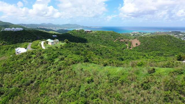 51 Marienhoj Ea, St. Croix, VI 00820 (MLS #20-1706) :: Hanley Team | Farchette & Hanley Real Estate