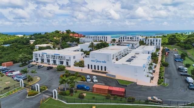 J46 Hermon Hill Co, St. Croix, VI 00820 (MLS #20-1708) :: Hanley Team | Farchette & Hanley Real Estate