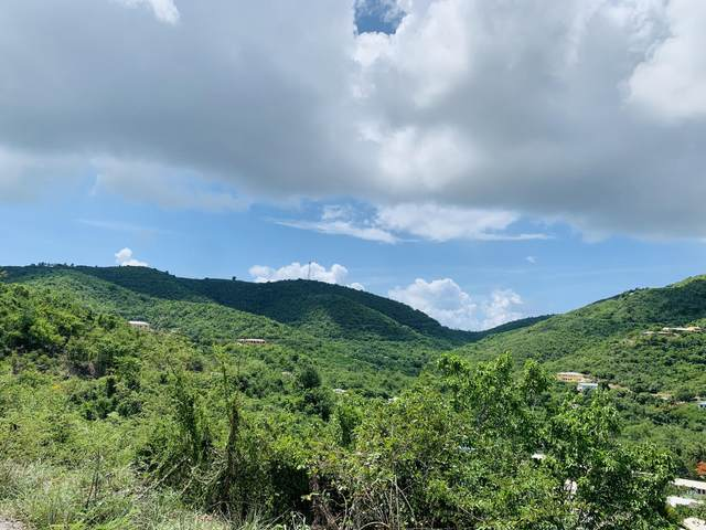 96 Eliza's Retreat Ea, St. Croix, VI 00820 (MLS #20-1713) :: Hanley Team | Farchette & Hanley Real Estate