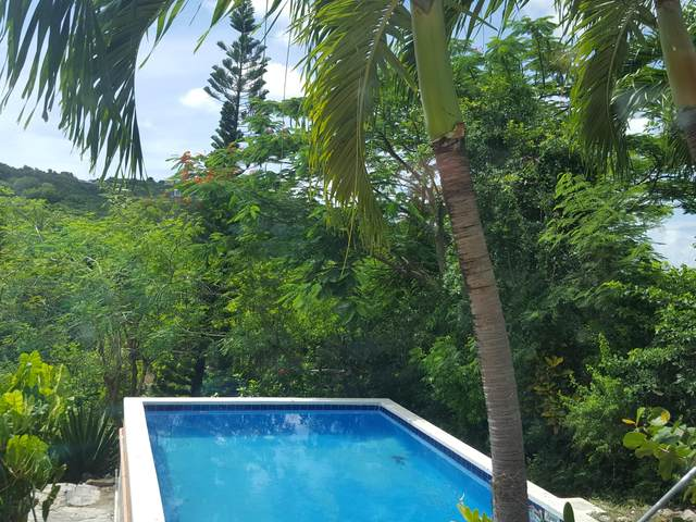 7D & 7AB Montpellier Qu, St. Croix, VI 00820 (MLS #20-1722) :: Hanley Team | Farchette & Hanley Real Estate